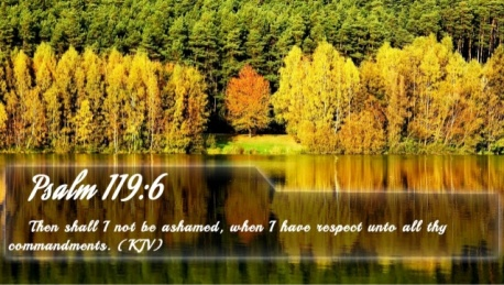psalm-1196-bible-verse-of-the-day-1-638